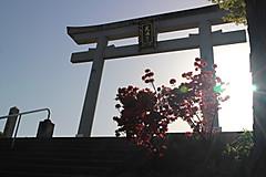 Img_1510