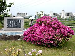 Dscn4787