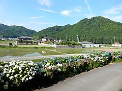 Dscn5910